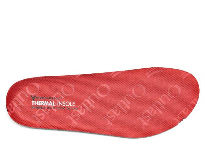 Thermal Insole